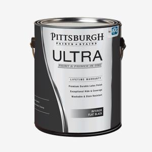 Ultra Interior Flat Black Paint
